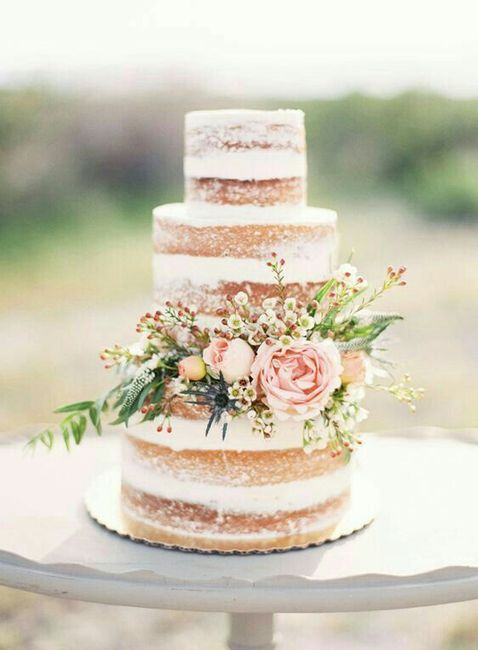 Ideas de pastel estilo naked 1