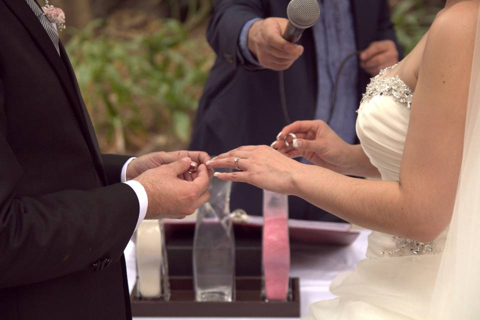 Ministro México Wedding Minister