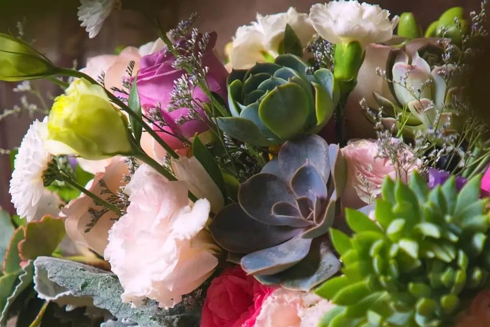 Tropical Flores&Suculentas Studio