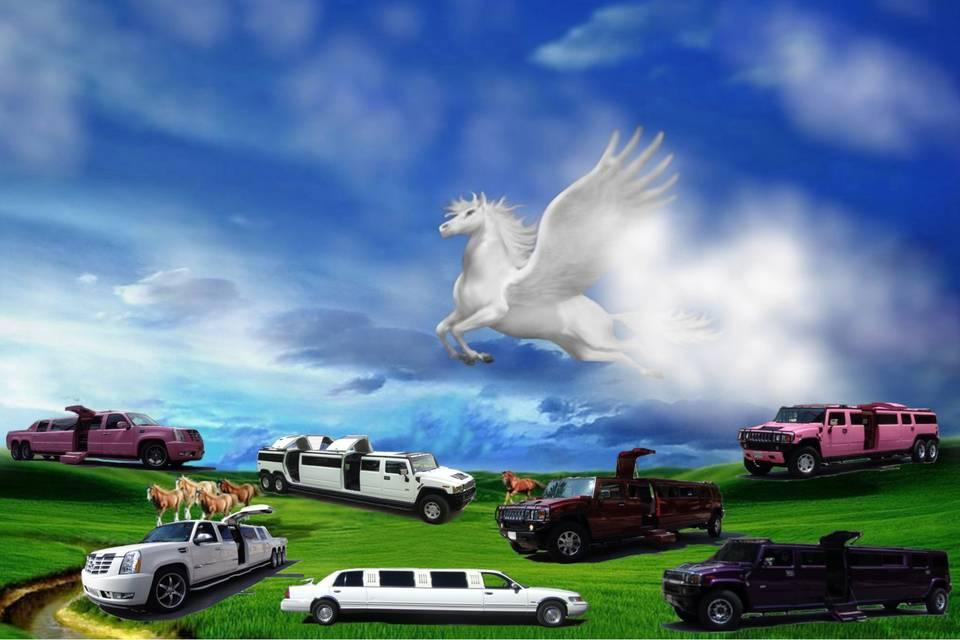 Limousines Pegasus
