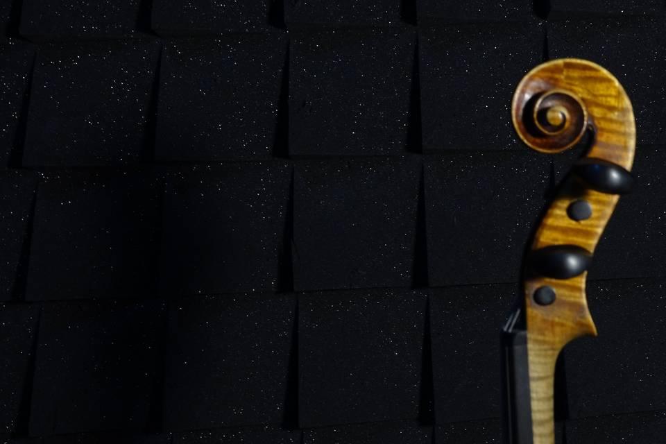 Apolo Servicios Musicales