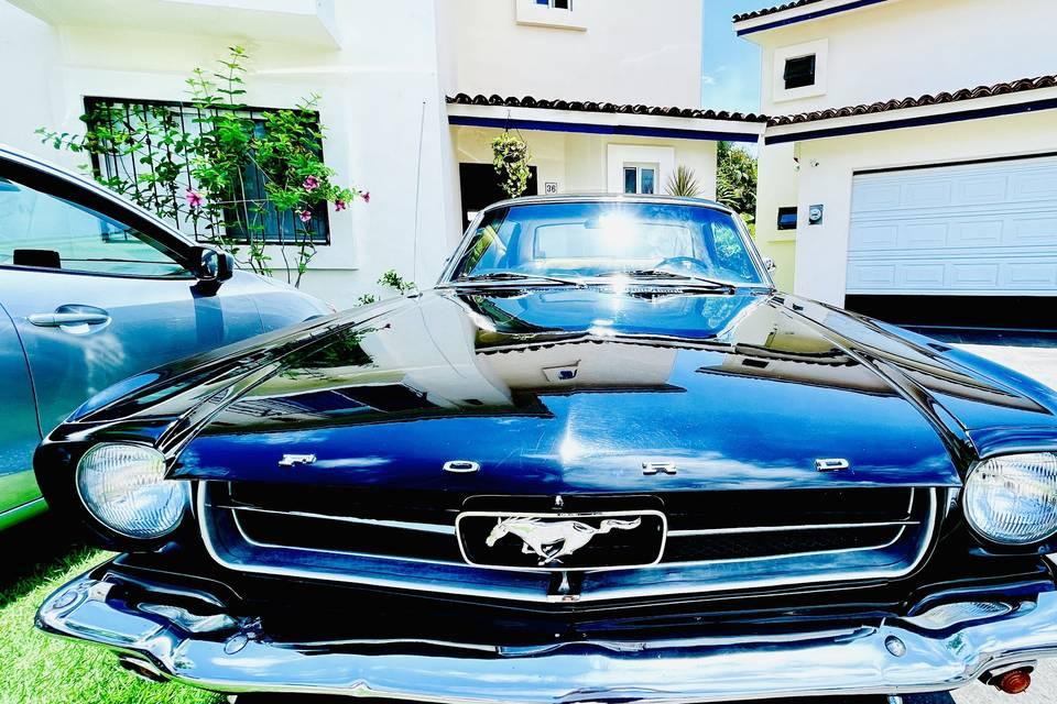 Dante Sánchez - Ford Mustang 1965