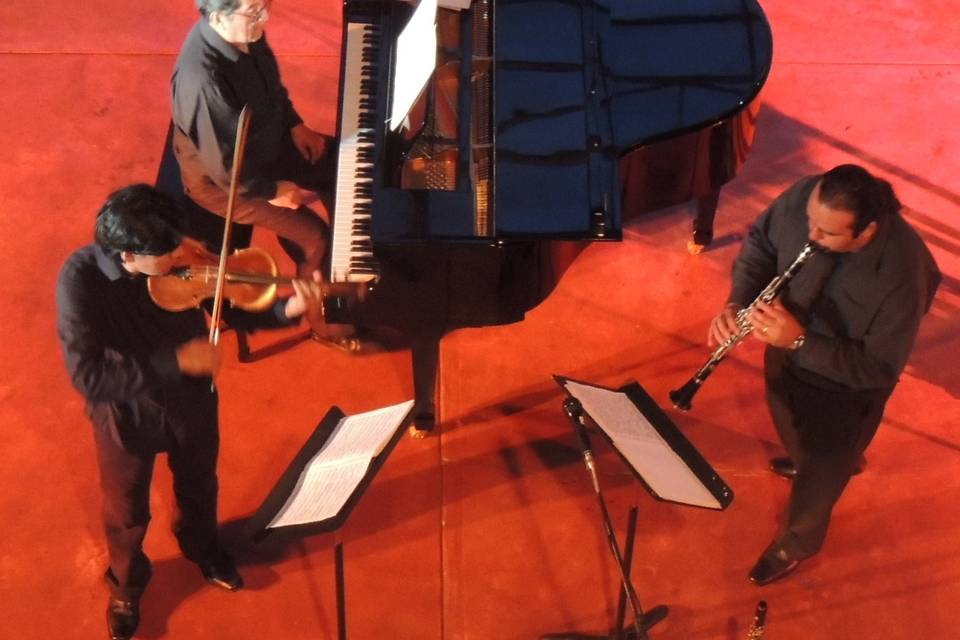 Concertistas de Oaxaca
