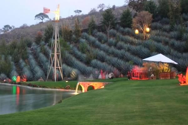 Jardines del Cerro Viejo