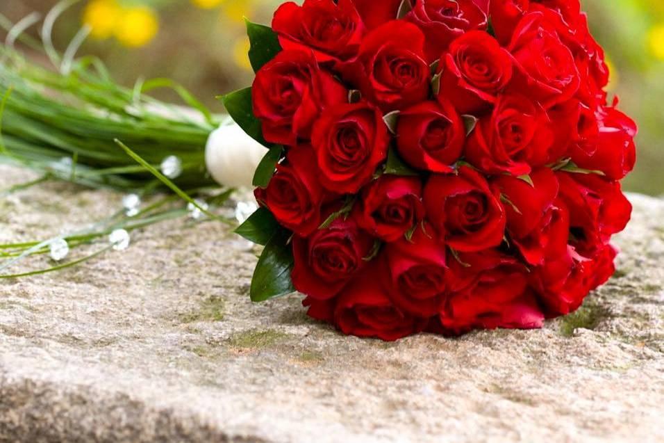 Brillit Floral