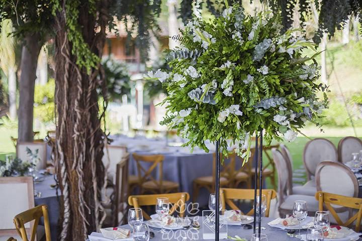 Ana Sophia Weddings & Event Design