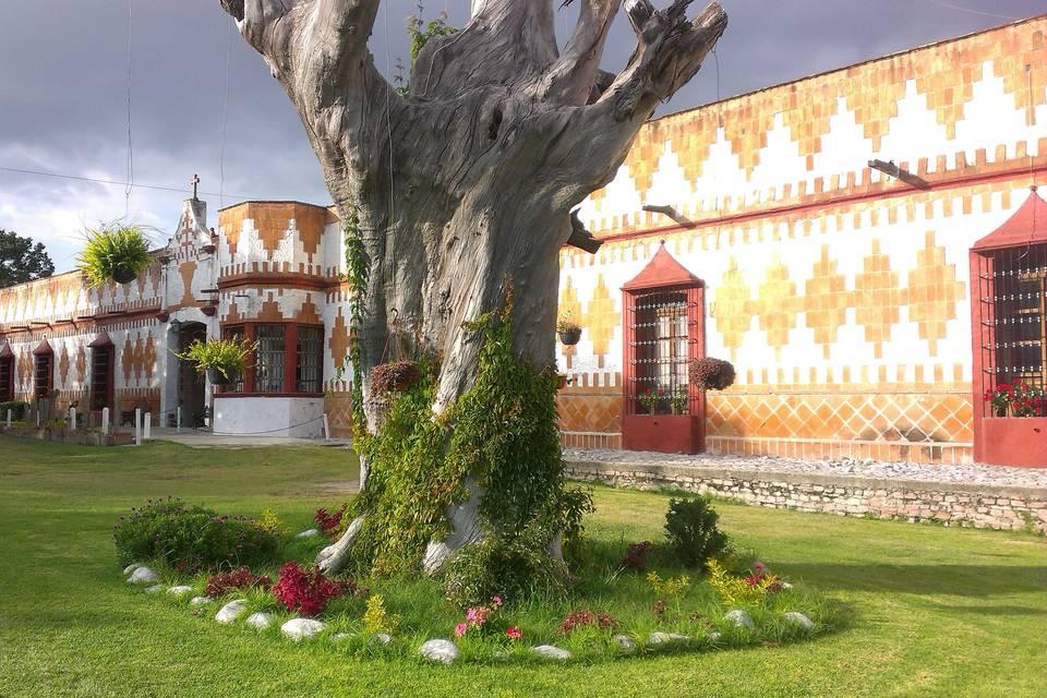 Hacienda San Pedro de Ovando