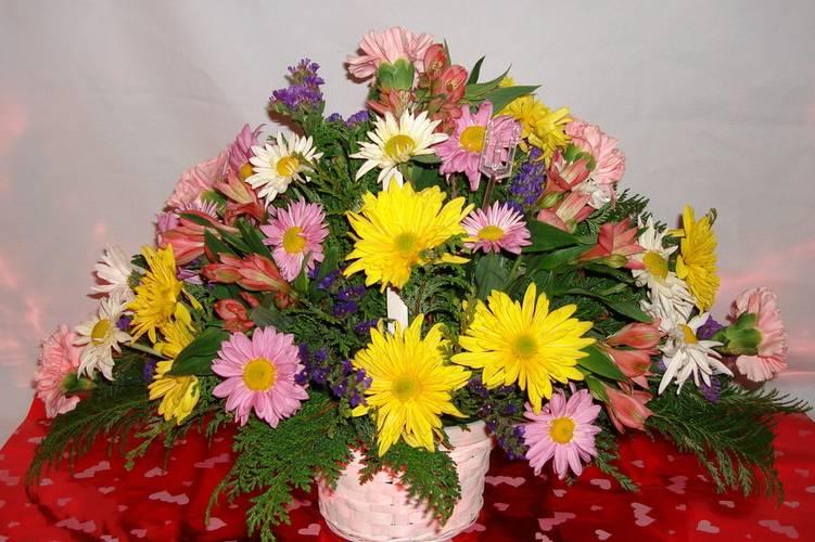 Florería Tulipán