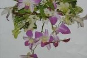 Bouquet para novia