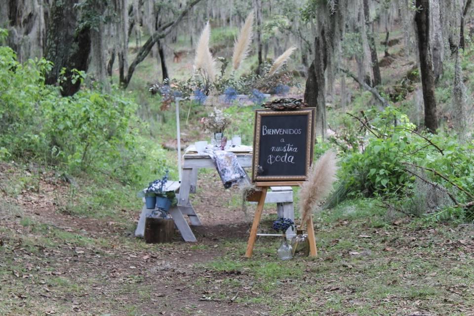 Foresta Camp