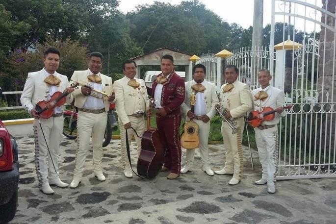 Mariachi Gala De Oro