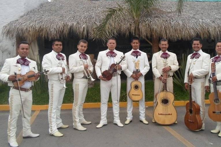 Mariachi Sonidos De Mi Tierra